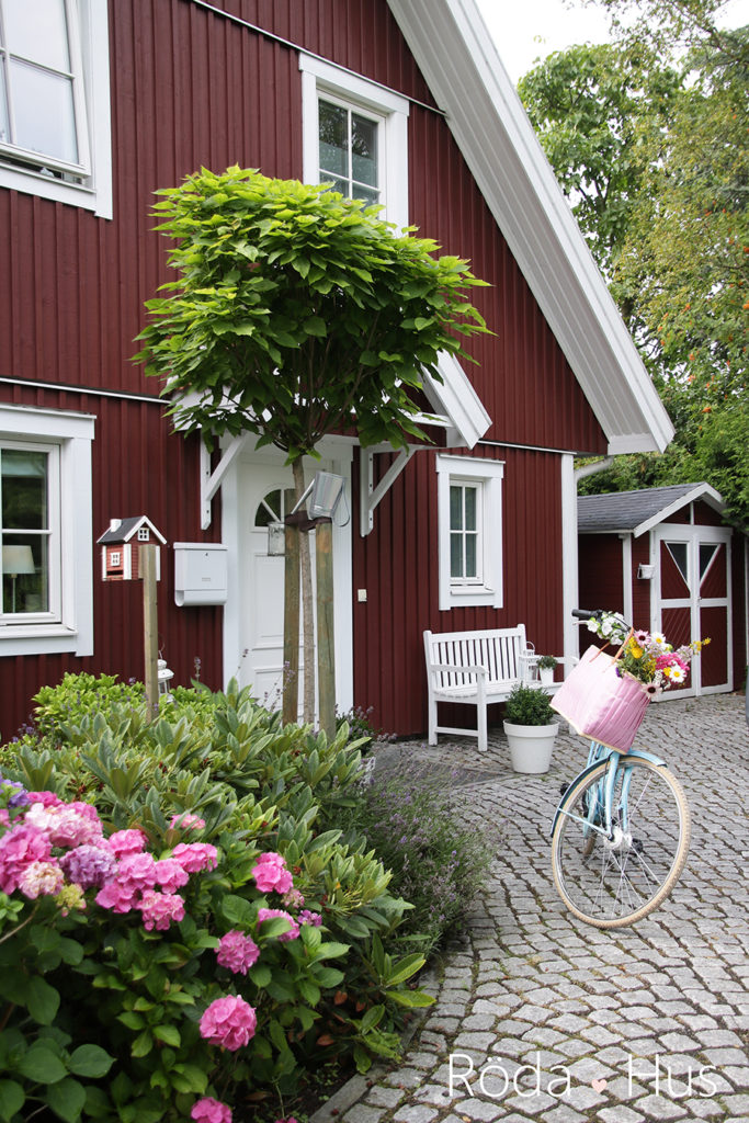 unser garten im august teil 2 r da hus. Black Bedroom Furniture Sets. Home Design Ideas
